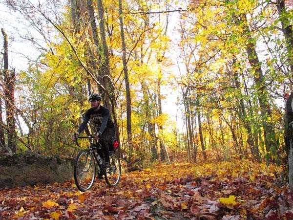 Riding singletrack fireroads at Middlesex Fells Reservation