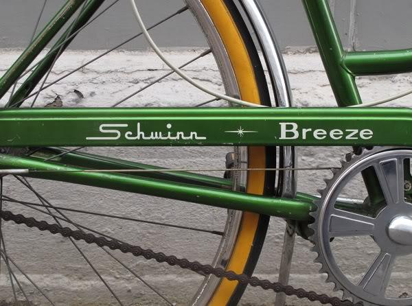 Schwinn Chainguard