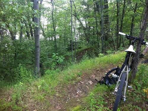 Summer of mountain bikes…